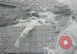 Image of piles of dead bodies Weimar Germany, 1945, second 49 stock footage video 65675073892