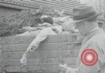 Image of piles of dead bodies Weimar Germany, 1945, second 50 stock footage video 65675073892