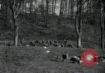 Image of German civilians on east bank of Mulde River Grimma Germany, 1945, second 9 stock footage video 65675073903