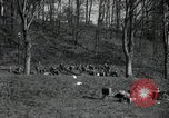 Image of German civilians on east bank of Mulde River Grimma Germany, 1945, second 13 stock footage video 65675073903