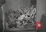 Image of pile of emaciated corpses Germany, 1945, second 3 stock footage video 65675073907