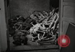 Image of pile of emaciated corpses Germany, 1945, second 14 stock footage video 65675073907