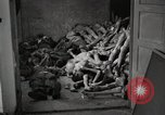 Image of pile of emaciated corpses Germany, 1945, second 23 stock footage video 65675073907