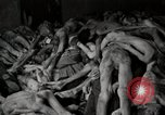 Image of pile of emaciated corpses Germany, 1945, second 62 stock footage video 65675073907