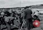 Image of emaciated corpses Landsberg Germany, 1945, second 58 stock footage video 65675073909