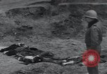 Image of unburied bodies of victims Germany, 1945, second 15 stock footage video 65675073912