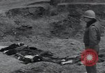 Image of unburied bodies of victims Germany, 1945, second 20 stock footage video 65675073912