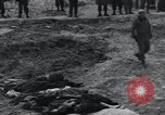 Image of unburied bodies of victims Germany, 1945, second 30 stock footage video 65675073912