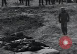 Image of unburied bodies of victims Germany, 1945, second 32 stock footage video 65675073912