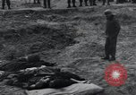 Image of unburied bodies of victims Germany, 1945, second 33 stock footage video 65675073912