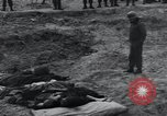 Image of unburied bodies of victims Germany, 1945, second 34 stock footage video 65675073912