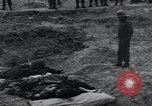 Image of unburied bodies of victims Germany, 1945, second 35 stock footage video 65675073912