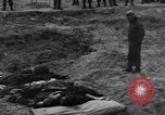 Image of unburied bodies of victims Germany, 1945, second 38 stock footage video 65675073912