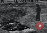 Image of unburied bodies of victims Germany, 1945, second 39 stock footage video 65675073912