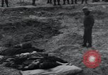 Image of unburied bodies of victims Germany, 1945, second 42 stock footage video 65675073912
