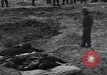 Image of unburied bodies of victims Germany, 1945, second 43 stock footage video 65675073912