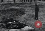 Image of unburied bodies of victims Germany, 1945, second 44 stock footage video 65675073912