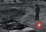 Image of unburied bodies of victims Germany, 1945, second 45 stock footage video 65675073912