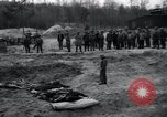 Image of unburied bodies of victims Germany, 1945, second 59 stock footage video 65675073912