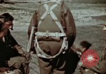 Image of B-26 Marauder bomber Germany, 1945, second 52 stock footage video 65675073916