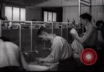 Image of Jewish people Netherlands, 1938, second 25 stock footage video 65675073949