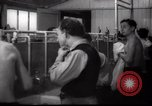 Image of Jewish people Netherlands, 1938, second 30 stock footage video 65675073949