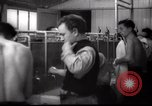 Image of Jewish people Netherlands, 1938, second 32 stock footage video 65675073949