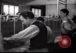 Image of Jewish people Netherlands, 1938, second 37 stock footage video 65675073949