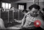 Image of Jewish people Netherlands, 1938, second 40 stock footage video 65675073949