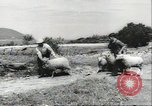 Image of biggest farm family Quebec Canada, 1942, second 7 stock footage video 65675074801