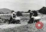 Image of biggest farm family Quebec Canada, 1942, second 8 stock footage video 65675074801
