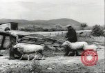 Image of biggest farm family Quebec Canada, 1942, second 12 stock footage video 65675074801
