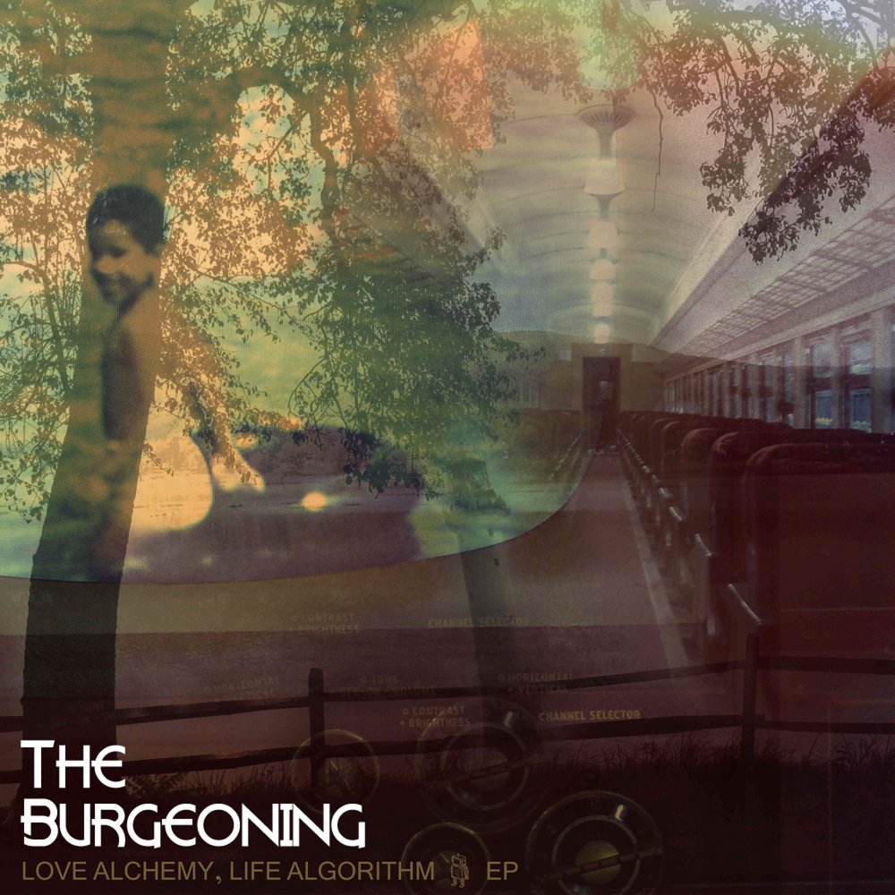 Love alchemy  life algorithm ep the burgeoning cover