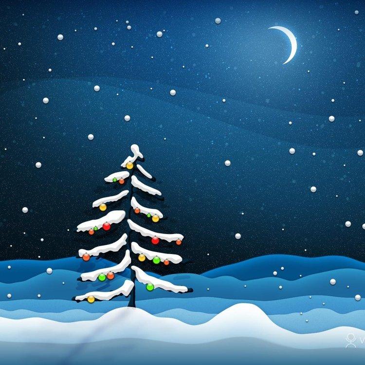 Christmas tree night 1600