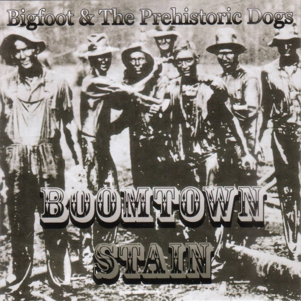 Boomtown stain cover