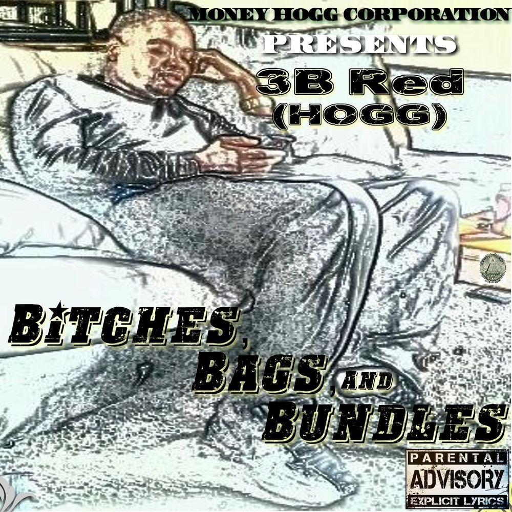 My project hogg s solo cover art 3 001