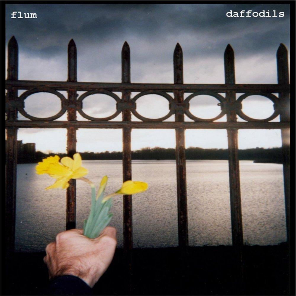 Flum daffodils coverart2013 1024