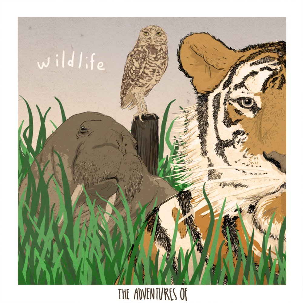 The adventures of   wildlife ep cover