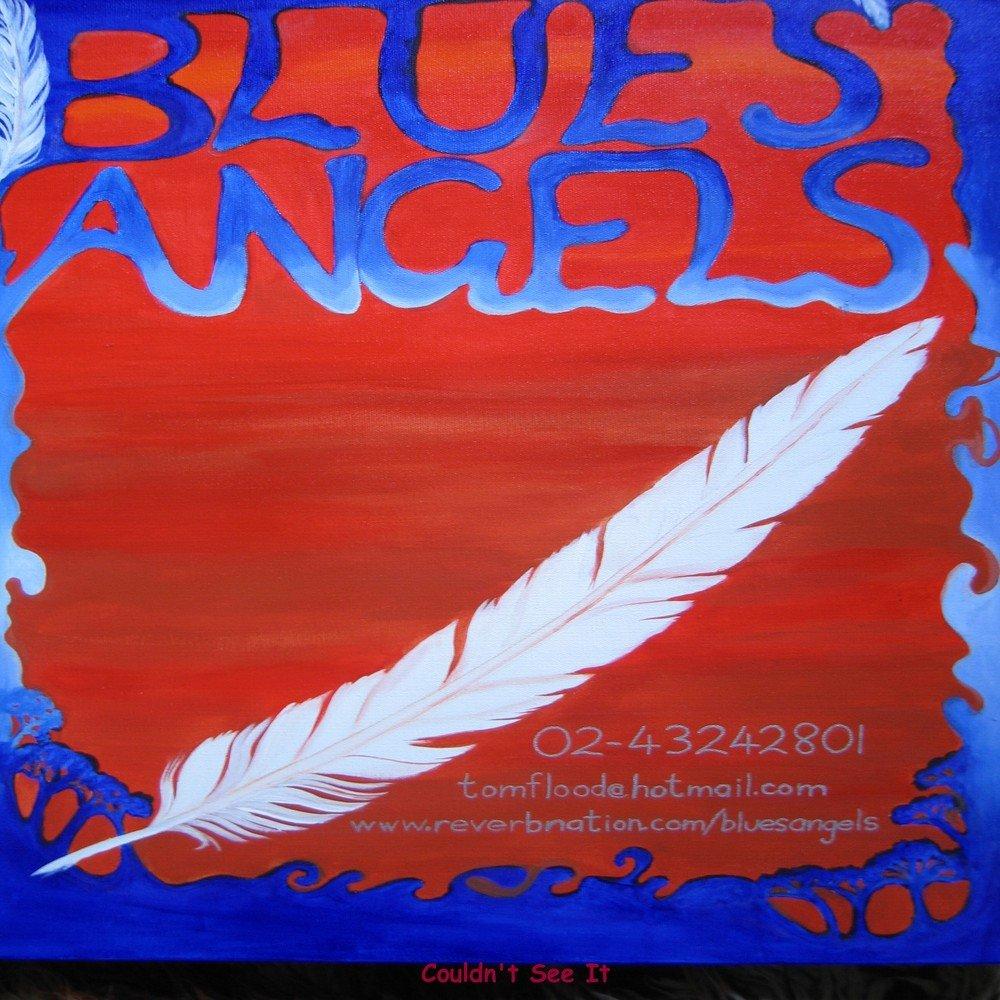 Couldn t see it   bluesangels