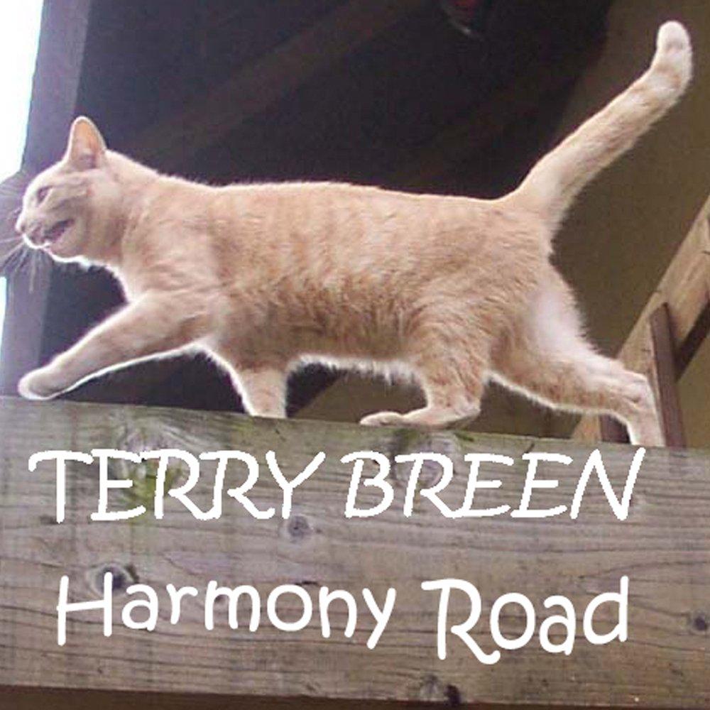 New large harmony road choko copy