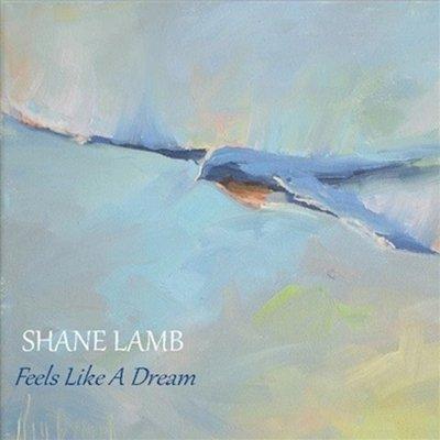 Feels Like A Dream (free EP)