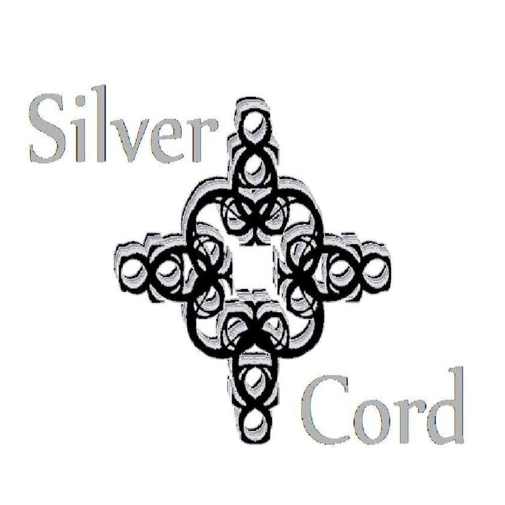 Silver cord cd baby cover art