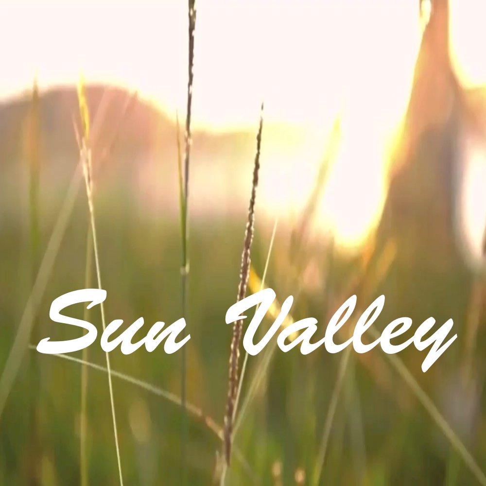 Sunny valley art