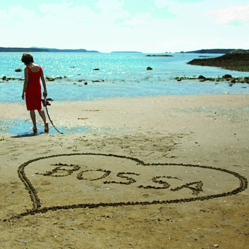 Bossa.heart3  2