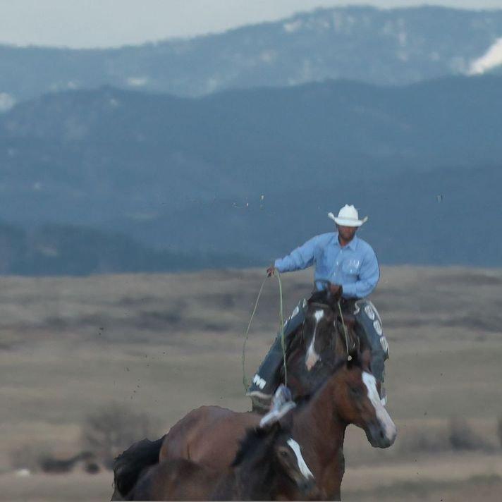 Some kinda cowboy blue shirt ranch horses rope