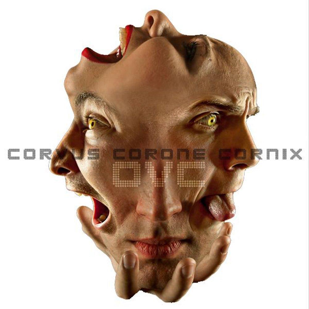 Corvus corone cornix e.p.