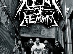 Image for Scent of Remains