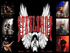 Image for Steelshot