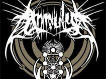 Annulus