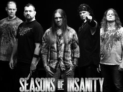 Image for Seasons of Insanity